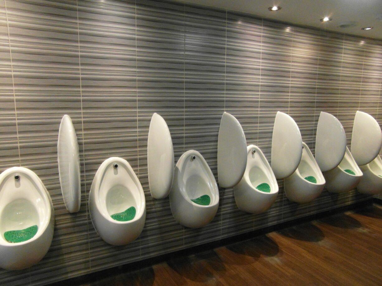 Fare i bisogni nei bagni pubblici?