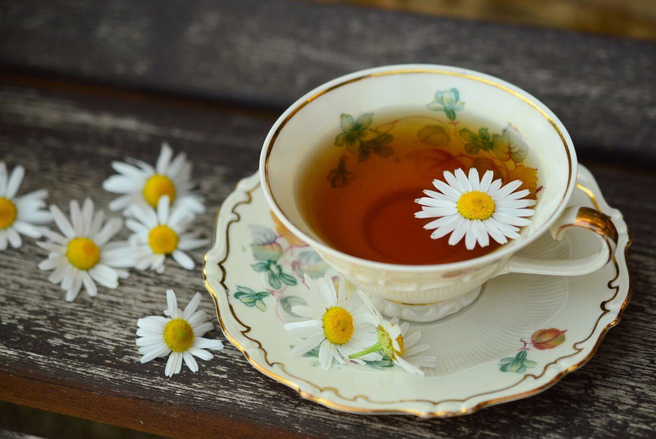 come viene preso il tè di carciofo per perdere peso